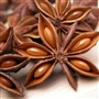 Anise Star Essential Oil - Anis étoile huile essentielle