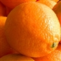 Orange Sweet Essential Oil - Huile essentielle d'orange douce